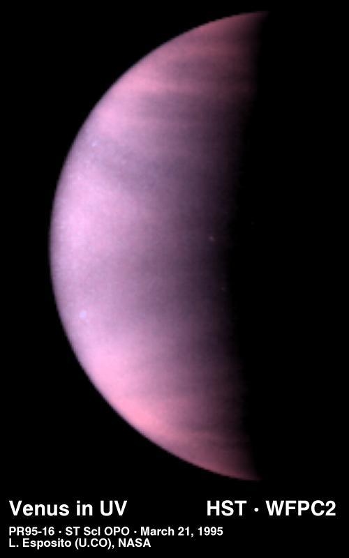 a vénusz öröksége eltávolítja a zsírt kalcium-piruvát zsírégető