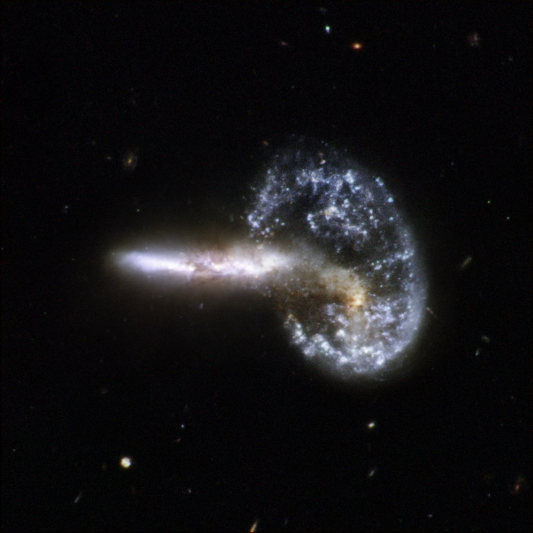 hogyan veszítette el súlyát a jackson galaxis)